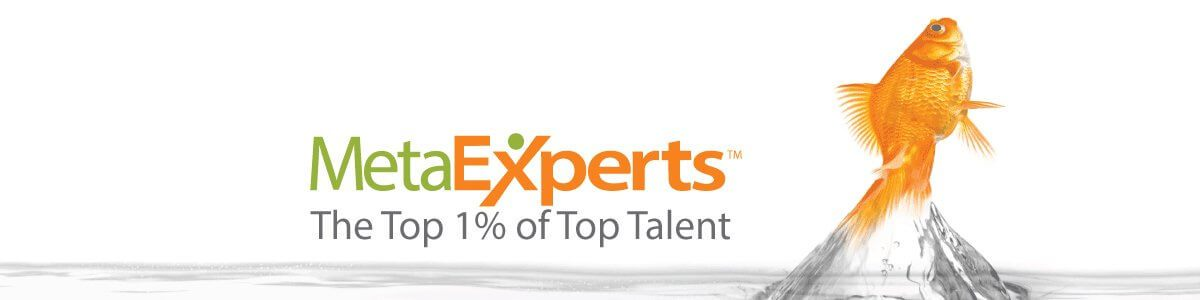 MetaExperts The Top 1% of Top Talent