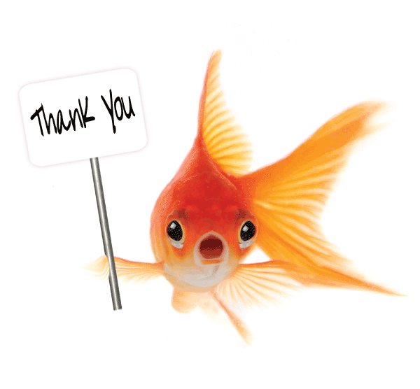 Thank You Fish with Banner