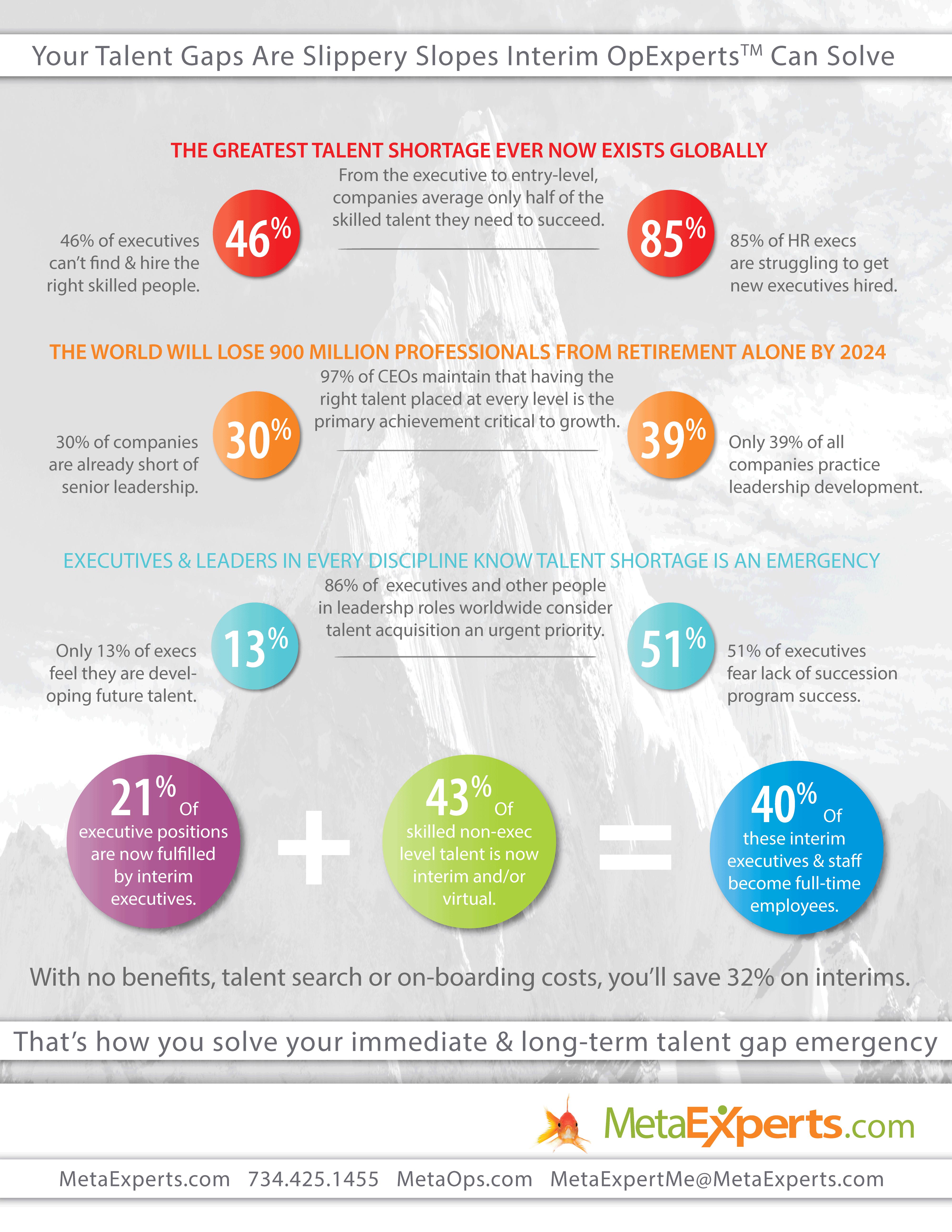 Talent Gap Interim Talent Infographic
